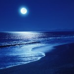 erotic story: the moonlight walk