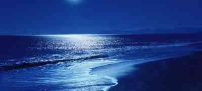 Erotic Story: The Moonlight Walk
