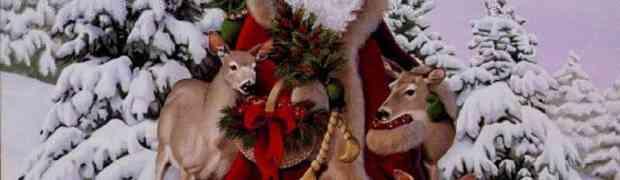Erotic Story: The Twinkle in Santa's Eye